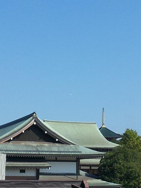 shinshoujizentai.jpg