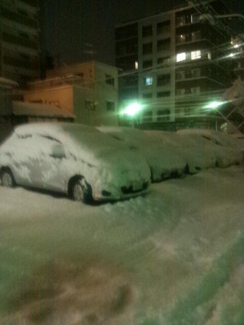 snowsnow.JPG