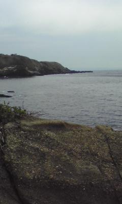 takara-1.jpg