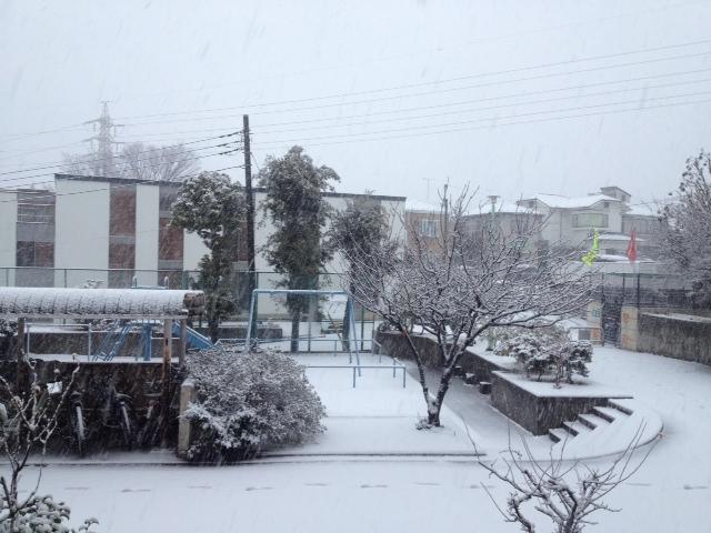 sibanoyukiniazentosuru.JPG